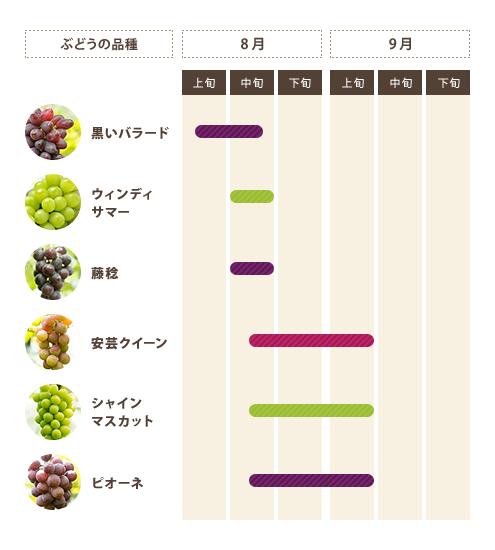ぶどうの種類と収穫時期